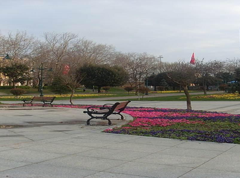gezi parkı1