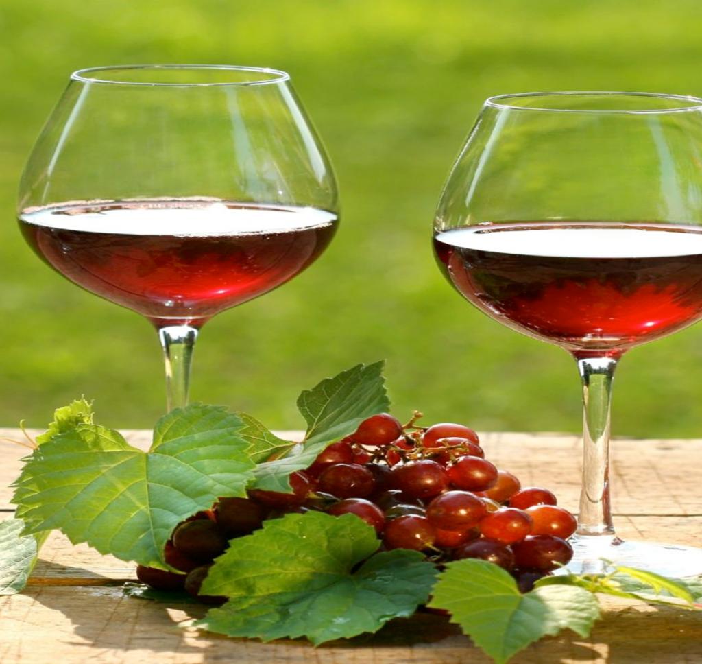 türkiyede şarapçılık3