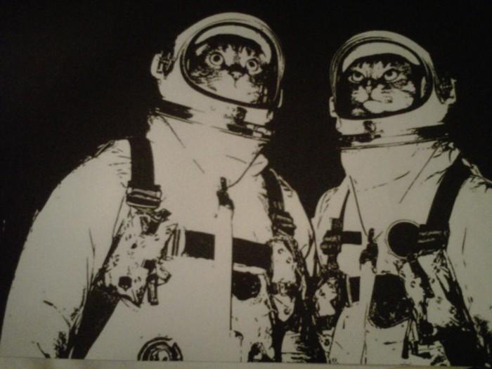 Astronaut cats 1