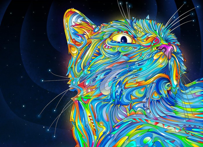 amazing cat colorful design illustration facebook timeline cover
