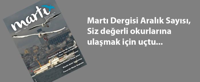 aralik_tanıtim