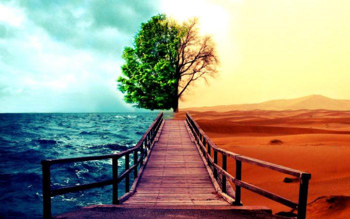 Hayat ve seçimler