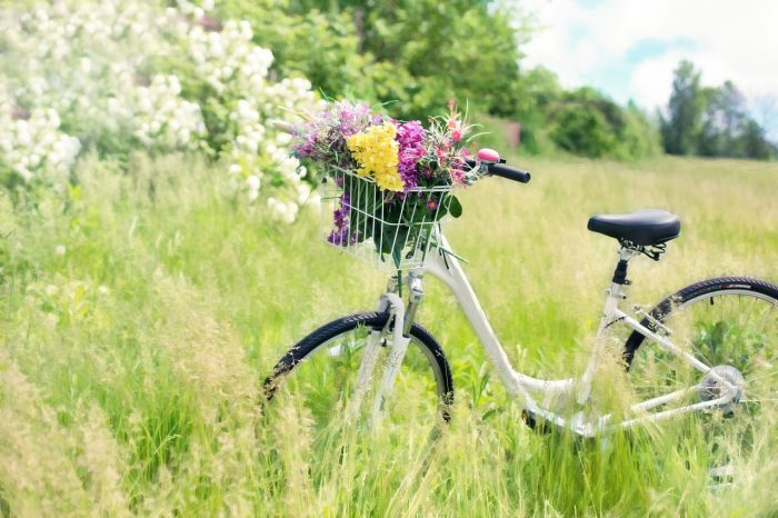 mevsimlerden-bahar
